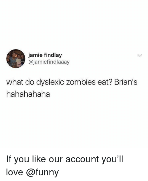 Funny, Love, and Memes: jamie findlay  @jamiefindlaaay  what do dyslexic zombies eat? Brian's  hahahahaha If you like our account you'll love @funny