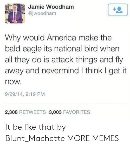 America, Be Like, and Dank: Jamie Woodham  @jwoodham  1  Why would America make the  bald eagle its national bird when  all they do is attack things and fly  away and nevermind I think I get it  now.  9/29/14, 9:19 PM  2,308 RETWEETS 3,003 FAVORITES It be like that by Blunt_Machette MORE MEMES