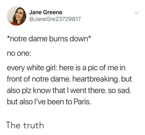 white girl: Jane Greene  @JaneGre23729817  *notre dame burns down*  no one:  every white girl: here is a pic of me in  front of notre dame. heartbreaking. but  also plz know that I went there. so sad.  but also l've been to Paris. The truth