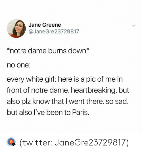 white girl: Jane Greene  @JaneGre23729817  *notre dame burns down*  no one:  every white girl: here is a pic of me in  front of notre dame. heartbreaking. but  also plz know that I went there. so sad.  but also l've been to Paris. 🎯 (twitter: JaneGre23729817)