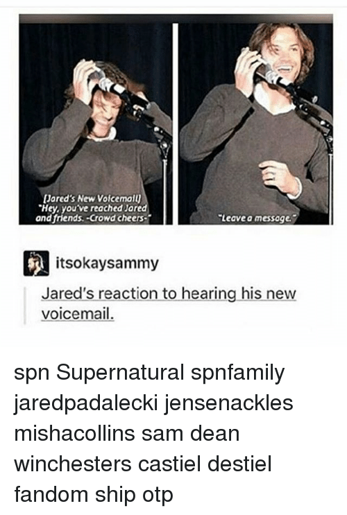 Memes, Jared, and Cheerfulness: Jared's New VoicemaU  'Hey, youve reached Jared  and friends. Crowd cheers  Leave a messoge.  itsokay sammy  Jared's reaction to hearing his new  voicemail. spn Supernatural spnfamily jaredpadalecki jensenackles mishacollins sam dean winchesters castiel destiel fandom ship otp