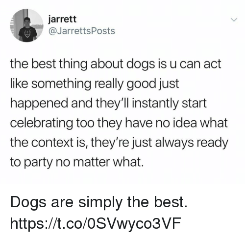 Dogs, Funny, and Party: jarrett  @@JarrettsPosts  the best thing about dogs is u can act  like something really good just  happened and they'll instantly start  celebrating too they have no idea what  the context is, they're just always ready  to party no matter what. Dogs are simply the best. https://t.co/0SVwyco3VF