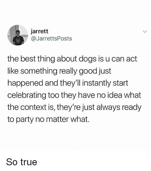 Dogs, Memes, and Party: jarrett  @JarrettsPosts  the best thing about dogs is u can act  like something really good just  happened and they'll instantly start  celebrating too they have no idea what  the context is, they're just always ready  to party no matter what. So true