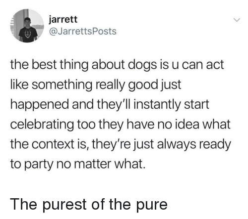 Dogs, Party, and Best: jarrett  @JarrettsPosts  the best thing about dogs is u can act  like something really good just  happened and they'll instantly start  celebrating too they have no idea what  the context is, they're just always ready  to party no matter what. The purest of the pure