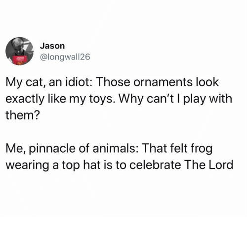 Animals, Memes, and Pinnacle: Jason  @longwall26  My cat, an idiot: Those ornaments look  exactly liKe my toys. Why can'ti play with  them?  Me, pinnacle of animals: That felt frog  wearing a top hat is to celebrate The Lord