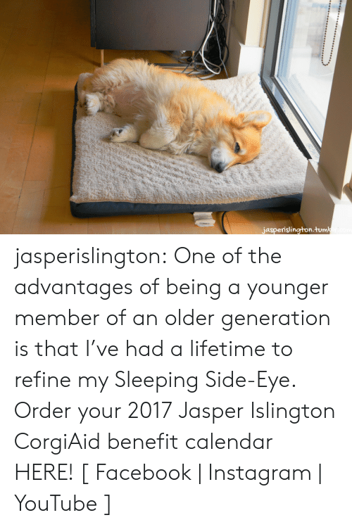 Advantages: jasperislington.tumbicom jasperislington: One of the advantages of being a younger member of an older generation is that I've had a lifetime to refine my Sleeping Side-Eye. Order your 2017 Jasper Islington CorgiAid benefit calendar HERE!  [ Facebook | Instagram | YouTube ]