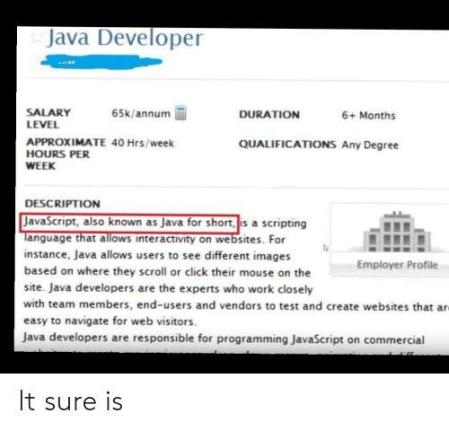 Click, Work, and Images: Java Developer  SALARY  LEVEL  65k/annum  DURATION  6+ Months  APPROXIMATE 40 Hrs/week  HOURS PER  QUALIFICATIONS Any Degree  WEEK  DESCRIPTION  JavaScript, also known as Java for short, is a scripting  Tanguage that allows interactivity on websites. For  instance, Java allows users to see different images  based on where they scroll or click their mouse on the  Employer Profile  site. Java developers are the experts who work closely  with team members, end-users and vendors to test and create websites that ar  easy to navigate for web visitors  Java developers are responsible for programming JavaScript on commercial It sure is