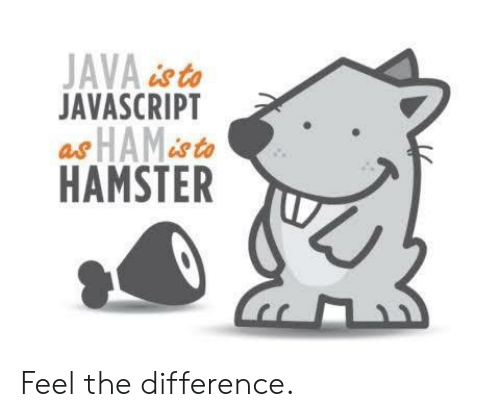 Hamster, Java, and Sto: JAVA&sto  JAVASCRIPT  HAMSTER Feel the difference.