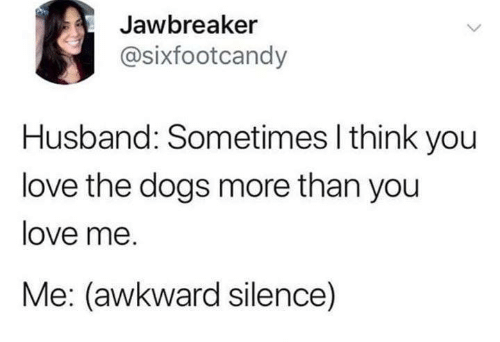 Awkward Silence: Jawbreaker  @sixfootcandy  Husband: Sometimes I think you  love the dogs more than you  love me.  Me: (awkward silence)