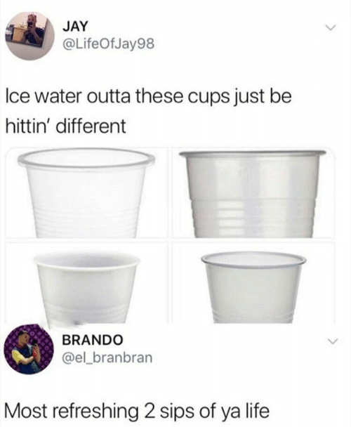 Jay, Life, and Water: JAY  @LifeOfJay98  lce water outta these cups just be  hittin' different  BRANDO  @el_branbran  Most refreshing 2 sips of ya life