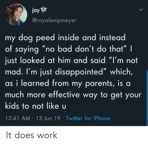 """Bad, Disappointed, and Iphone: jay  @royalempmeyer  my dog peed inside and instead  of saying """"r  just looked at him and said """"I'm not  mad. I'm just disappointed"""" which,  as i learned from my parents, is al  much more effective way to get your  bad don't do that"""" 