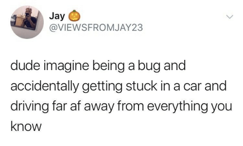 Af, Driving, and Dude: Jay  @VIEWSFROMJAY23  dude imagine being a bug and  accidentally getting stuck in a car and  driving far af away from everything you  know