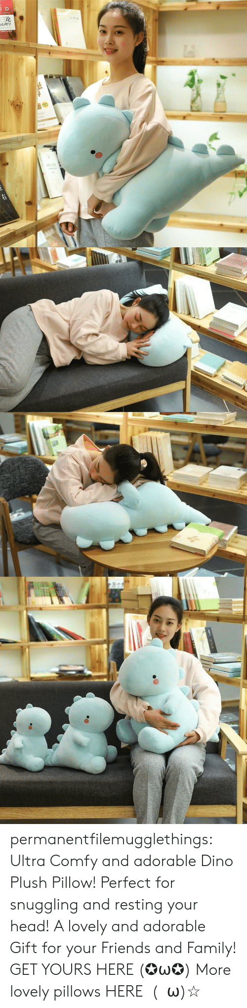 Family, Friends, and Head: JD  三论  laint  orld  TDNAR  ww.e permanentfilemugglethings: Ultra Comfy and adorable Dino Plush Pillow! Perfect for snuggling and resting your head! A lovely and adorable Gift for your Friends and Family! GET YOURS HERE (✪ω✪) More lovely pillows HERE  (・ω)☆