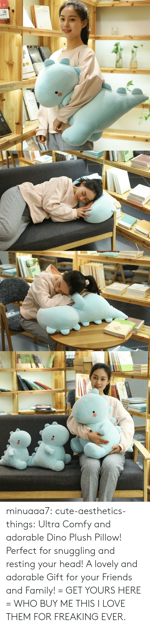Cute, Family, and Friends: JD  三论  laint  orld  TNAR  ww.e minuaaa7:  cute-aesthetics-things:  Ultra Comfy and adorable Dino Plush Pillow! Perfect for snuggling and resting your head! A lovely and adorable Gift for your Friends and Family! = GET YOURS HERE =  WHO BUY ME THIS I LOVE THEM FOR FREAKING EVER.