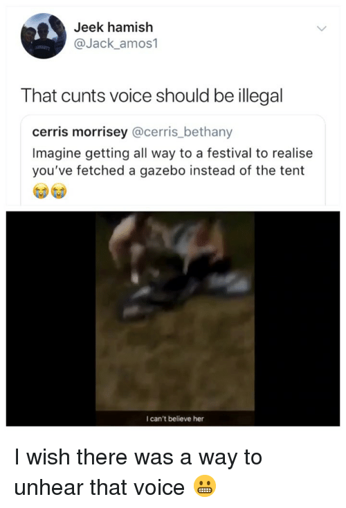Voice, Festival, and Girl Memes: Jeek hamish  @Jack_amos1  That cunts voice should be illegal  cerris morrisey @cerris_bethany  Imagine getting all way to a festival to realise  you've fetched a gazebo instead of the tent  I can't believe her I wish there was a way to unhear that voice 😬