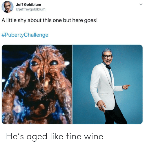 Wine, Jeff Goldblum, and One: Jeff Goldblum  @jeffreygoldblum  A little shy about this one but here goes!  He's aged like fine wine