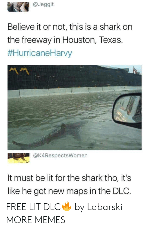 Houston: @Jeggit  Believe it or not, this is a shark on  the freeway in Houston, Texas.  #HurricaneHarvy  @K4RespectsWomen  It must be lit for the shark tho, it's  like he got new maps in the DLC. FREE LIT DLC🔥 by Labarski MORE MEMES