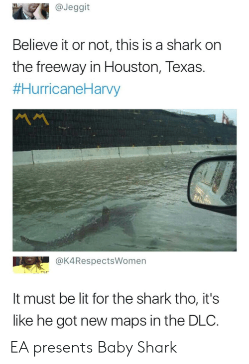 Houston: @Jeggit  Believe it or not, this is a shark on  the freeway in Houston, Texas.  #HurricaneHarvy  MM  @K4RespectsWomen  It must be lit for the shark tho, it's  like he got new maps in the DLC. EA presents Baby Shark