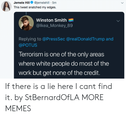 Dank, Memes, and Target: Jemele Hill@jemelehill - 5m  This tweet snatched my edges.  Winston Smith  @lkea_Monkey 89  Replying to @PressSec @realDonaldTrump and  @POTUS  Terrorism is one of the only areas  where white people do most of the  work but get none of the credit. If there is a lie here I cant find it. by StBernardOfLA MORE MEMES