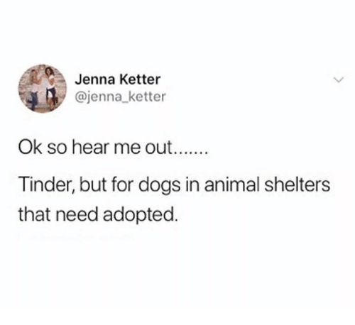 Dogs, Tinder, and Animal: Jenna Ketter  @jenna_ketter  Ok so hear me out  Tinder, but for dogs in animal shelters  that need adopted.