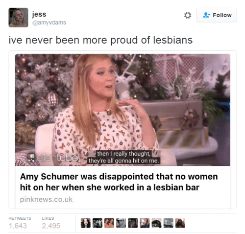 Amy Schumer, Disappointed, and Lesbians: jess  Follow  @amyvdams  ive never been more proud of lesbians  then I really thought,  ellentube they're all gonna hit on me  Amy Schumer was disappointed that no women  hit on her when she worked in a lesbian bar  pinknews.co.uk  LIKES  RETWEETS  1,643  2,495