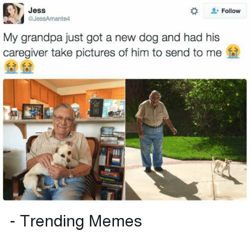 Memes, Grandpa, and 🤖: Jess  Follow  My grandpa just got a new dog and had his  caregiver take pictures of him to send to me - Trending Memes