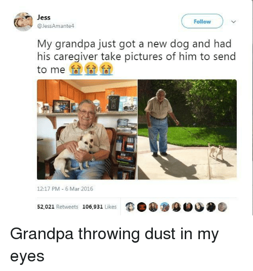 Caregiver: Jess  @JessAmante4  Follow  My grandpa just got a new dog and had  his caregiver take pictures of him to send  to me  12:17 PM 6 Mar 2016  52,021 Retweets 106,931 Likes  9目 Grandpa throwing dust in my eyes