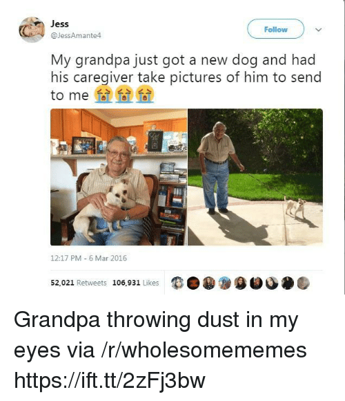 Caregiver: Jess  @JessAmante4  Follow  My grandpa just got a new dog and had  his caregiver take pictures of him to send  to me  12:17 PM 6 Mar 2016  52,021 Retweets 106,931 Likes  9目 Grandpa throwing dust in my eyes via /r/wholesomememes https://ift.tt/2zFj3bw