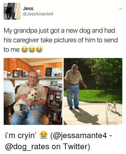 Memes, Twitter, and Grandpa: Jess  @JessAmante4  My grandpa just got a new dog and had  his caregiver take pictures of him to send  to me i'm cryin' 😭 (@jessamante4 - @dog_rates on Twitter)