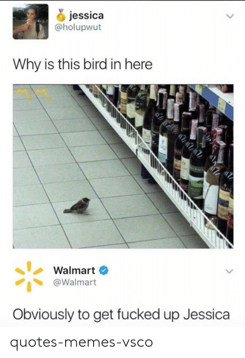 Memes, Walmart, and Quotes: jessica  @holupwtt  Why is this bird in here  Walmart  @Walmart  Obviously to get fucked up Jessica quotes-memes-vsco