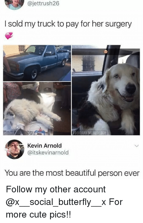 Beautiful, Cute, and Memes: @jettrush26  I sold my truck to pay for her surgery  SO  FB@DANIKMEMEOLOG  Kevin Arnold  @itskevinarnold  You are the most beautiful person ever Follow my other account @x__social_butterfly__x For more cute pics!!