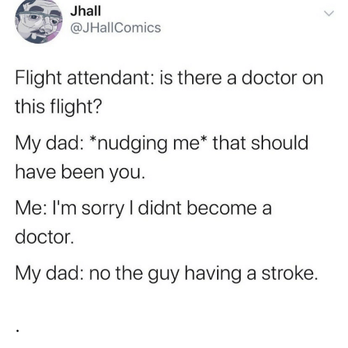 Dad, Doctor, and Sorry: Jhall  @JHallComics  Flight attendant: is there a doctor on  this flight?  My dad: *nudging me* that should  have been you.  Me: I'm sorry I didnt become a  doctor.  My dad: no the guy having a stroke. .