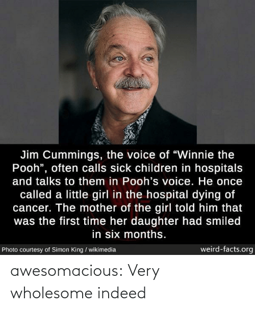 "Hospital: Jim Cummings, the voice of ""Winnie the  Pooh"", often calls sick children in hospitals  and talks to them in Pooh's voice. He once  called a little girl in the hospital dying of  cancer. The mother of the girl told him that  was the first time her daughter had smiled  in six months.  weird-facts.org  Photo courtesy of Simon King / wikimedia awesomacious:  Very wholesome indeed"