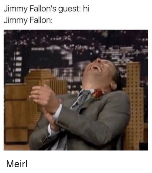 Jimmy Fallon, MeIRL, and Jimmy: Jimmy Fallon's guest: hi  Jimmy Fallon Meirl