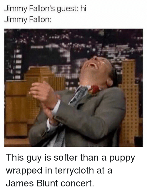 Jimmy Fallon, Memes, and Puppy: Jimmy Fallon's guest: hi  Jimmy Fallon: This guy is softer than a puppy wrapped in terrycloth at a James Blunt concert.