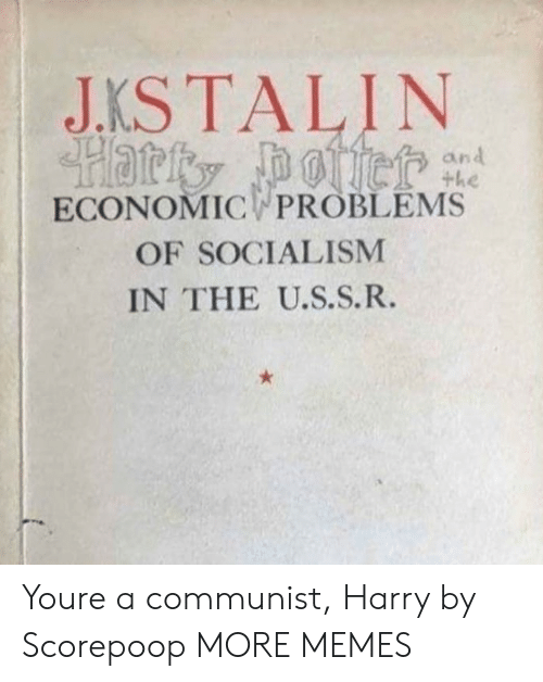 Dank, Memes, and Target: JKSTALIN  an  ECONOMIC PROBLEMS  OF SOCIALISM  IN THE U.S.S.R. Youre a communist, Harry by Scorepoop MORE MEMES