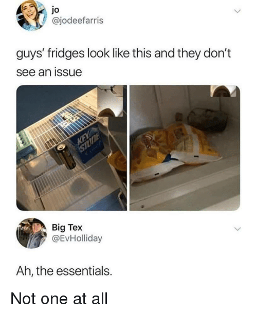 Essentials, Big, and One: Jo  @jodeefarris  guys' fridges look like this and they don't  see an issue  Big Tex  @EvHolliday  Ah, the essentials. Not one at all