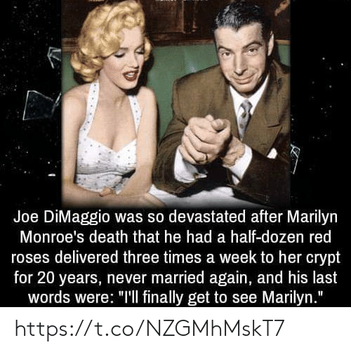 """Memes, Death, and Joe DiMaggio: Joe DiMaggio was so devastated after Marilyn  Monroe's death that he had a half-dozen red  roses delivered three times a week to her crypt  for 20 years, never married again, and his last  words were: """"'l finally get to see Marilyn."""" https://t.co/NZGMhMskT7"""