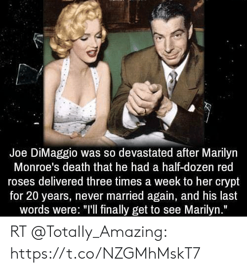 """Memes, Death, and Amazing: Joe DiMaggio was so devastated after Marilyn  Monroe's death that he had a half-dozen red  roses delivered three times a week to her crypt  for 20 years, never married again, and his last  words were: """"'l finally get to see Marilyn."""" RT @TotaIIy_Amazing: https://t.co/NZGMhMskT7"""