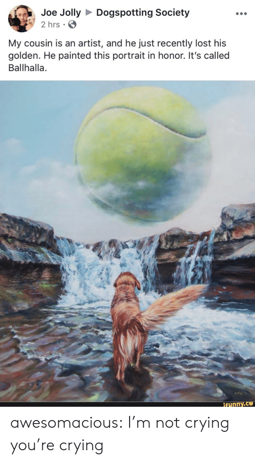 Im Not Crying: Joe JollyDogspotting Society  2 hrs  My cousin is an artist, and he just recently lost his  golden. He painted this portrait in honor. It's called  Ballhalla.  ifunny awesomacious:  I'm not crying you're crying