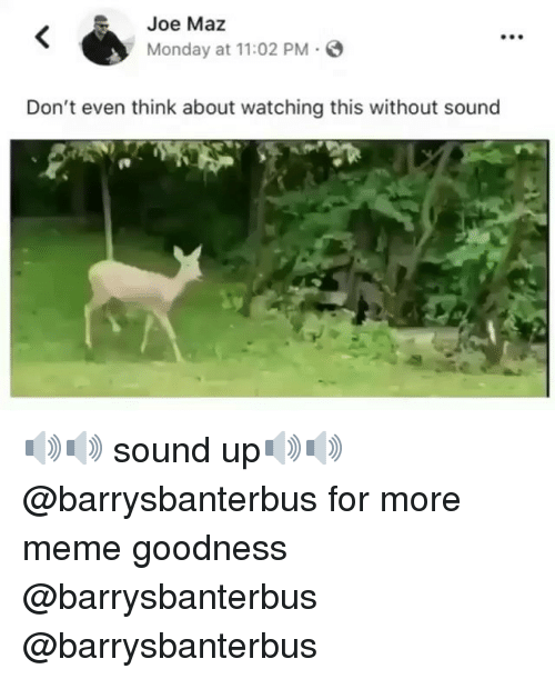 Meme, Memes, and Monday: Joe Maz  Monday at 11:02 PM  Don't even think about watching this without sound 🔊🔊 sound up🔊🔊 @barrysbanterbus for more meme goodness @barrysbanterbus @barrysbanterbus
