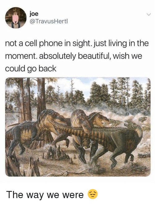 Beautiful, Phone, and Dank Memes: joe  TravusHertl  not a cell phone in sight. just living in the  moment. absolutely beautiful, wish we  could go back The way we were 😔