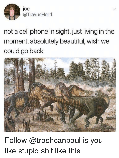 Beautiful, Phone, and Shit: Joe  @TravusHertl  not a cell phone in sight. just living in the  moment. absolutely beautiful, wish we  could go back Follow @trashcanpaul is you like stupid shit like this