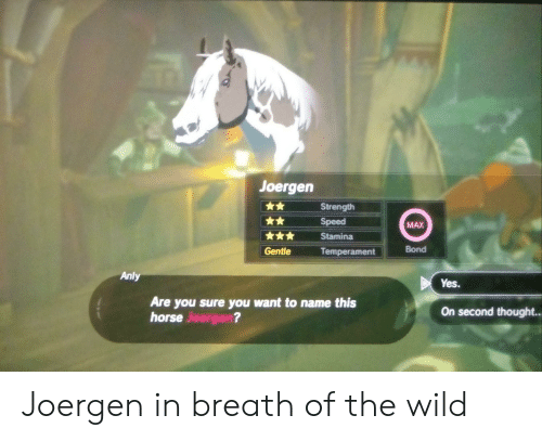 🦅 25+ Best Memes About the Legend of Zelda Breath of the Wild   the