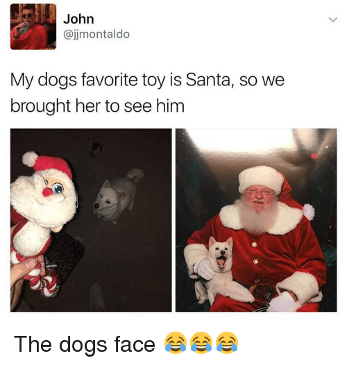 Dog Faces: John  ajjmontaldo  My dogs favorite toy is Santa, so we  brought her to see him The dogs face 😂😂😂