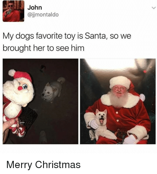 Christmas, Dogs, and Memes: John  @jjmontaldo  My dogs favorite toy is Santa, so we  brought her to see him Merry Christmas