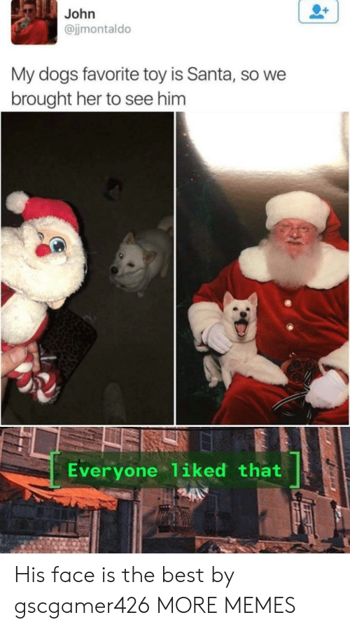 Dank, Dogs, and Memes: John  @jjmontaldo  My dogs favorite toy is Santa, so we  brought her to see him  Everyone 1iked that His face is the best by gscgamer426 MORE MEMES
