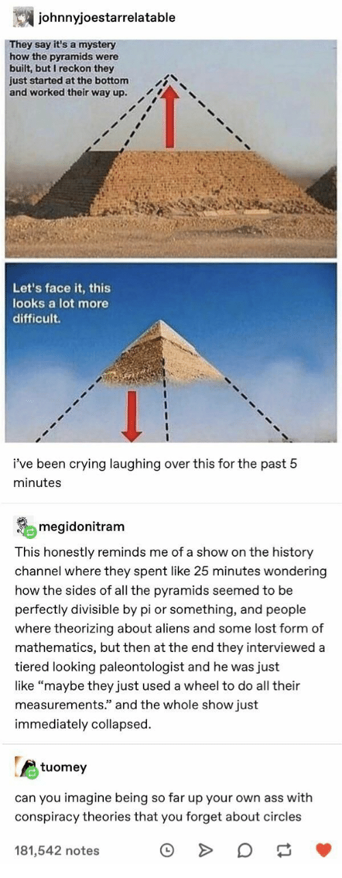 "Ass, Crying, and Lost: johnnyjoestarrelatable  They say it's a mystery  how the pyramids were  built, but I reckon they  just started at the bottom  and worked their way up.  Let's face it, this  looks a lot more  difficult  i've been crying laughing over this for the past 5  minutes  megidonitram  This honestly reminds me of a show on the history  channel where they spent like 25 minutes wondering  how the sides of all the pyramids seemed to be  perfectly divisible by pi or something, and people  where theorizing about aliens and some lost form of  mathematics, but then at the end they interviewed a  tiered looking paleontologist and he was just  like ""maybe they just used a wheel to do all their  measurements."" and the whole show just  immediately collapsed  tuomey  can you imagine being so far up your own ass with  conspiracy theories that you forget about circles  181,542 notes"