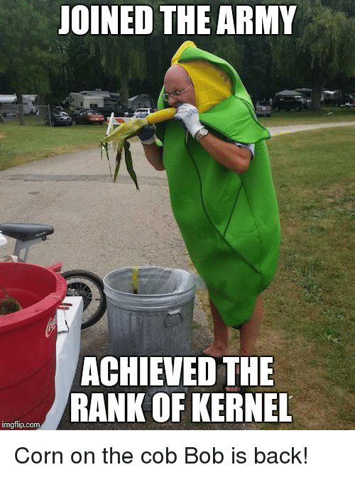 kernel: JOINED THE ARMY  ACHIEVED THE  RANK OF KERNEL  imgflip.comm <p>Corn on the cob Bob is back!</p>