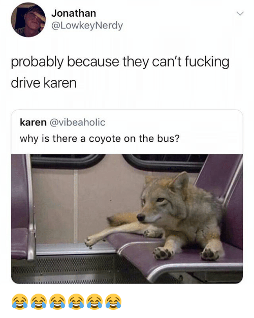Fucking, Coyote, and Drive: Jonathan  @LowkeyNerdy  probably because they can't fucking  drive karen  karen @vibeaholic  why is there a coyote on the bus? 😂😂😂😂😂😂